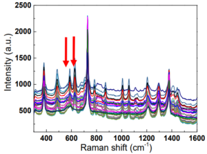 30 Raman spectra taken across the diameter of a 0.9 mm membrane hosting MSU crystals