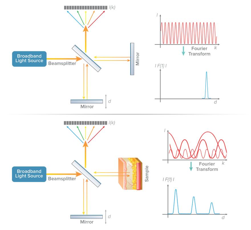 SD-OCT schematic