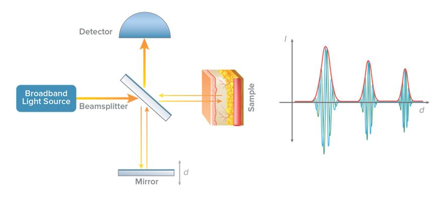 Interferometer schematic - structured sample