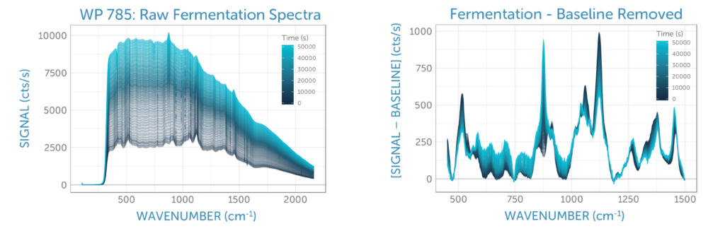 Raman fermentation spectra over time, raw and baseline removed